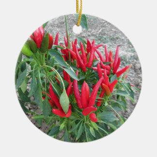 植物でつるす赤唐辛子 セラミックオーナメント
