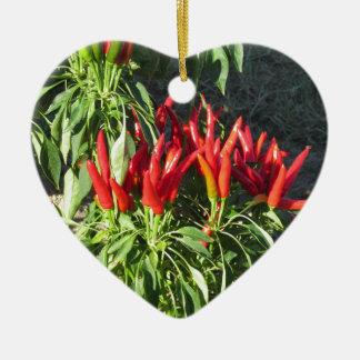植物でつるす赤唐辛子。 タスカニー、イタリア セラミックオーナメント