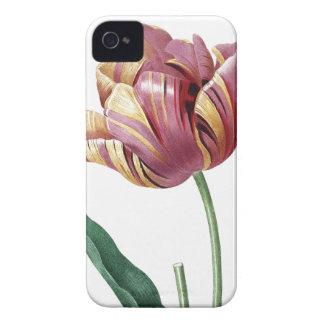 植物のイラストレーションのチューリップ Case-Mate iPhone 4 ケース