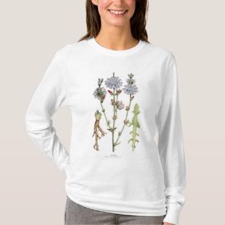 植物のチコリーのヴィンテージ Tシャツ