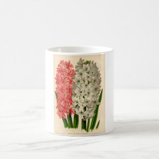 植物のプリント- Hyacinth コーヒーマグカップ