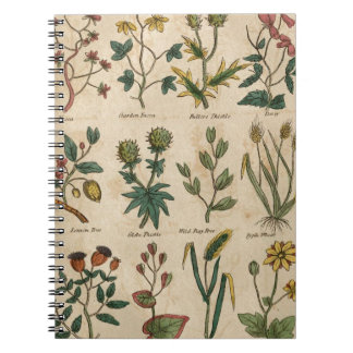 植物のプレート ノートブック