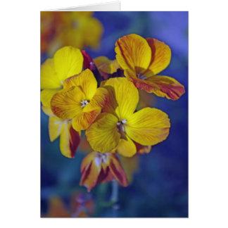 植物の壁の花カード カード