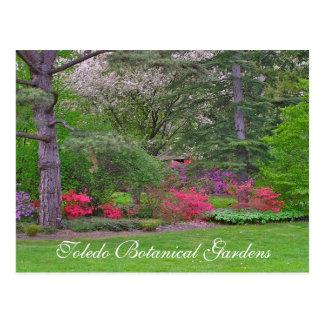 植物の春COLOR/TOLEDOとのpostcard/BURSTING ポストカード