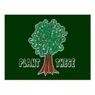 植物の木 ポストカード