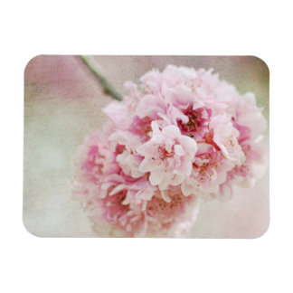 植物の桜 マグネット