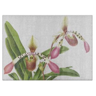 植物の熱帯蘭によっては花柄が開花します カッティングボード