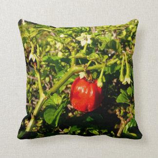 植物の独身のなhabaneroの赤唐辛子 クッション