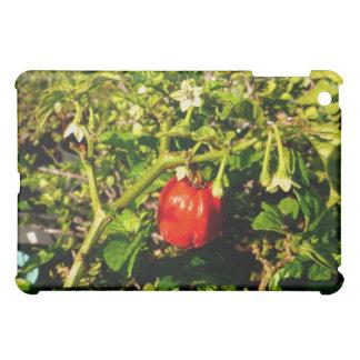 植物の独身のなhabaneroの赤唐辛子 iPad miniケース