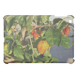 植物の砂岩のHabaneroのコショウ iPad Miniケース