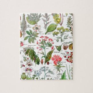 植物の絵 ジグソーパズル