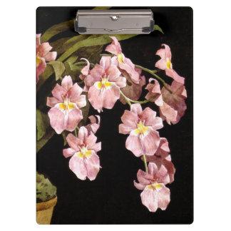 植物の花のクリップボード クリップボード