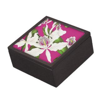 植物の蘭によっては熱帯花柄が開花します ギフトボックス