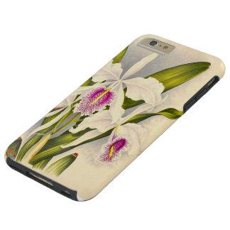 植物の蘭によっては花のiPhone6ケースが開花します Tough iPhone 6 Plus ケース