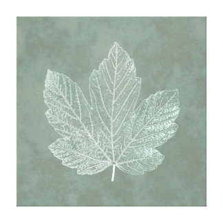 植物の骨組カエデの葉 キャンバスプリント
