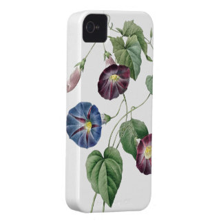 植物のiphone 4ケースの朝顔 Case-Mate iPhone 4 ケース