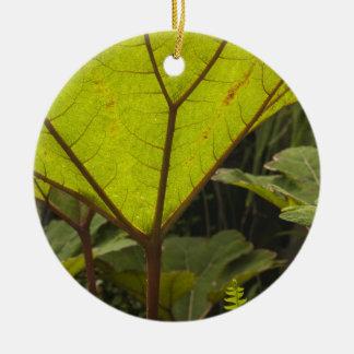 植物園で詳細、エクアドル2を植えて下さい セラミックオーナメント
