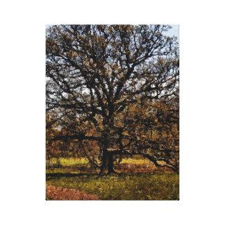 植物園の木の木Iの写真は絵画をデジタル化しました キャンバスプリント