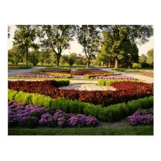 植物園、一年生植物、モントリオール、C ポストカード