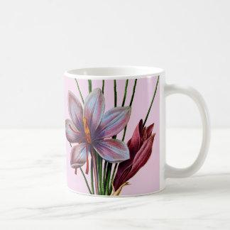 植物学: サフラン コーヒーマグカップ