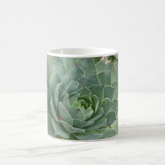 植物相 コーヒーマグカップ