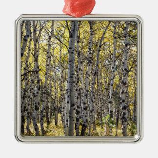 《植物》アスペンの木および金紅葉 メタルオーナメント