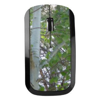 《植物》アスペンの木の無線電信のマウス ワイヤレスマウス
