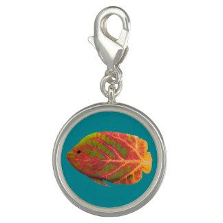 《植物》アスペンの葉の熱帯魚1 チャーム