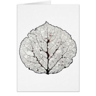 《植物》アスペンの葉の骨組1 カード