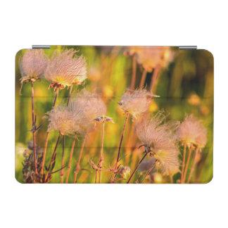 《植物》アスペン果樹園の草原煙の野生の花 iPad MINIカバー