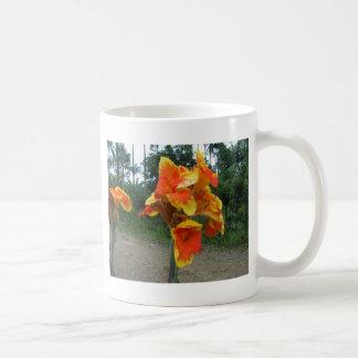 植物、コスタリカの花。 コーヒーマグカップ