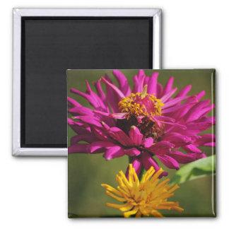 《植物》百日草の花の磁石 マグネット