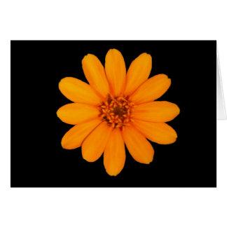 《植物》百日草の豊富さのオレンジ カード