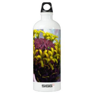 《植物》百日草の開花の内部のパステル調ピンク ウォーターボトル