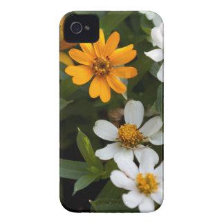 《植物》百日草のiPhoneの場合 Case-Mate iPhone 4 ケース
