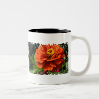 《植物》百日草 ツートーンマグカップ