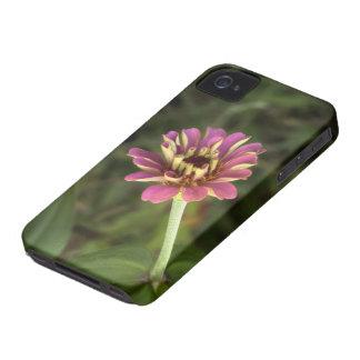 《植物》百日草 Case-Mate iPhone 4 ケース