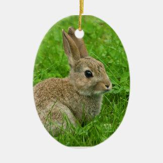 楕円形のオーナメントのためのヨーロッパウサギのイメージ セラミックオーナメント