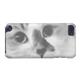 極度のかわいい猫のクローズアップのポートレートの写真 iPod TOUCH 5G ケース