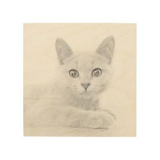 極度のかわいい猫のポートレートのファインアートの写真 ウッドウォールアート
