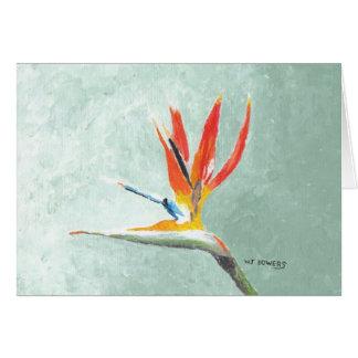 極楽鳥 カード