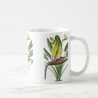 極楽鳥 コーヒーマグカップ
