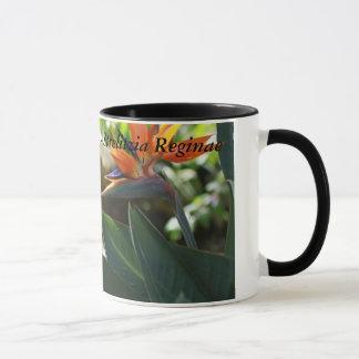 極楽鳥-ゴクラクチョウカ属のReginaeのギフトのマグ マグカップ