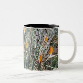 極楽鳥 ツートーンマグカップ