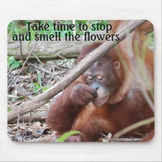 楽しみ: 花をストップ、かぐのに時間をかけて下さい マウスパッド