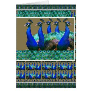 楽しむ:  孔雀nは芸術のグラフィックに羽をつけます カード
