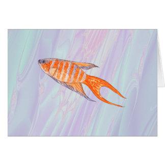 楽園の魚 カード