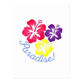 楽園 ポストカード