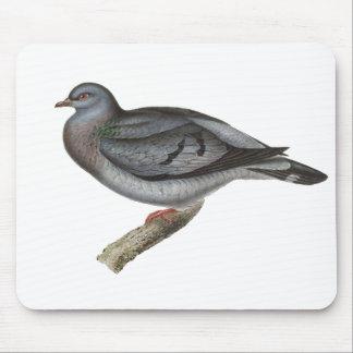 標準的なハトか在庫の鳩 マウスパッド
