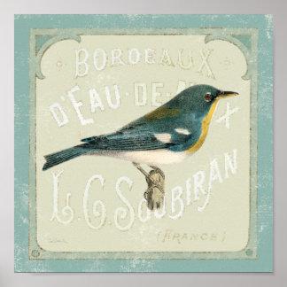 権利に直面しているヴィンテージの鳥 ポスター